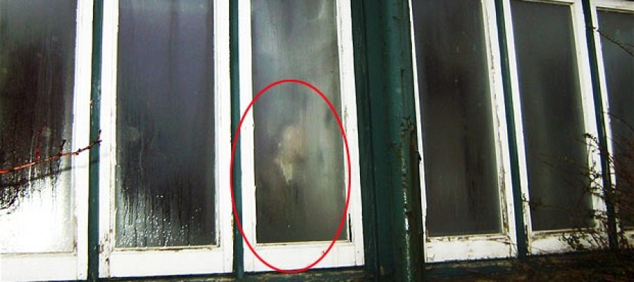 Photograph: 'ghost of former guesthouse worker'