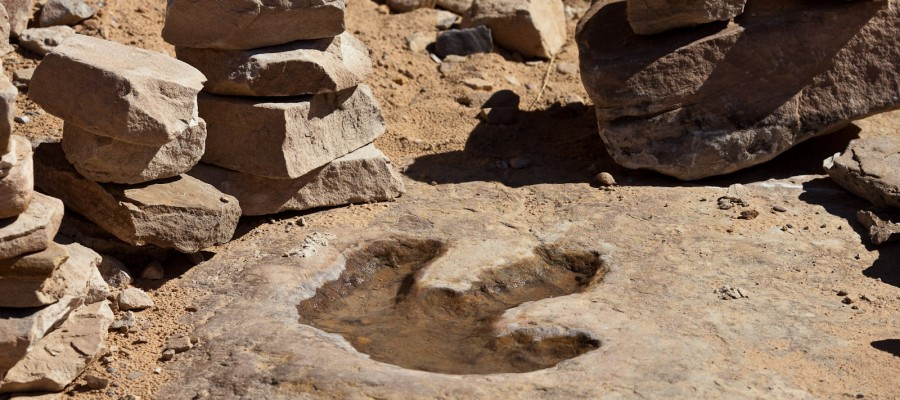 Dinosaur and Man Footprints – Mystery