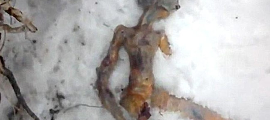 Frozen Alien found in Russia