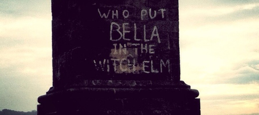 Who Put Bella in the Wych Elm?  strange crime mystery
