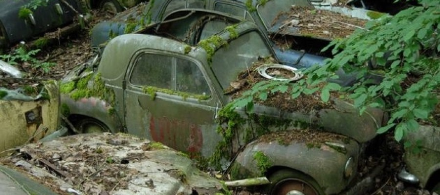 Switzerland's Kaufdorf Vehicle Graveyard