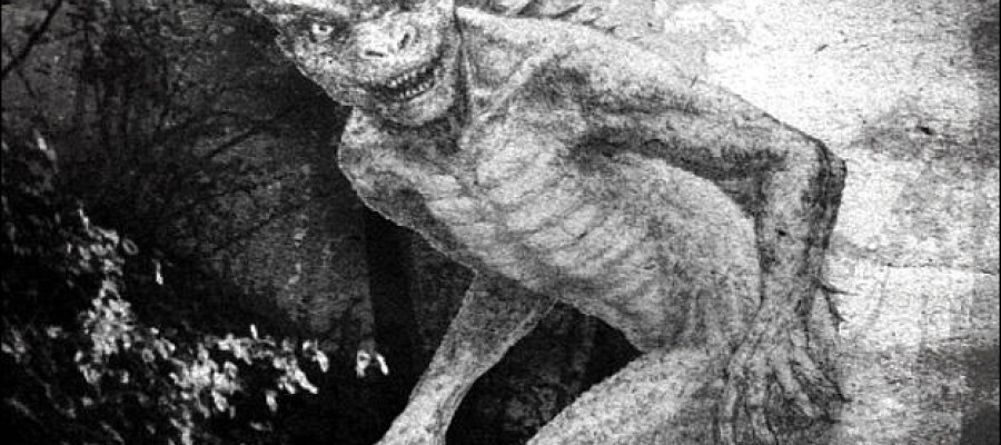 The true story and mystery of Lizard Man