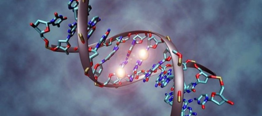 DNA data storage could last for millennia
