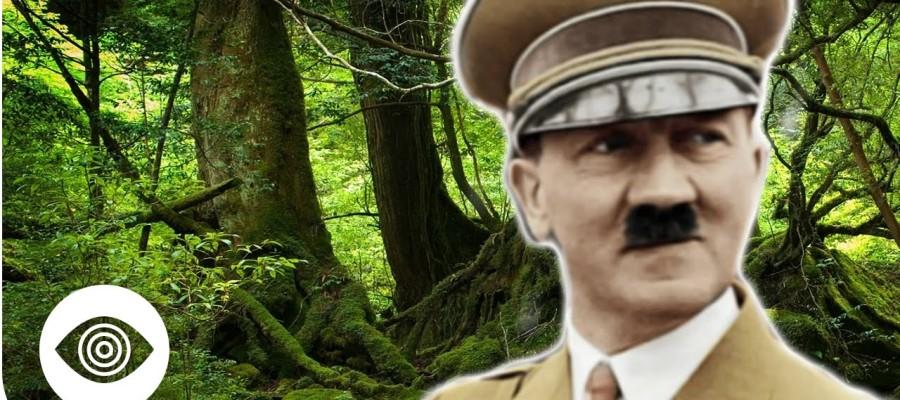 Did Nazis Escape To The Argentine Jungle?