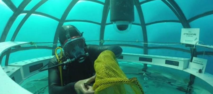 Food crops grown in underwater biospheres