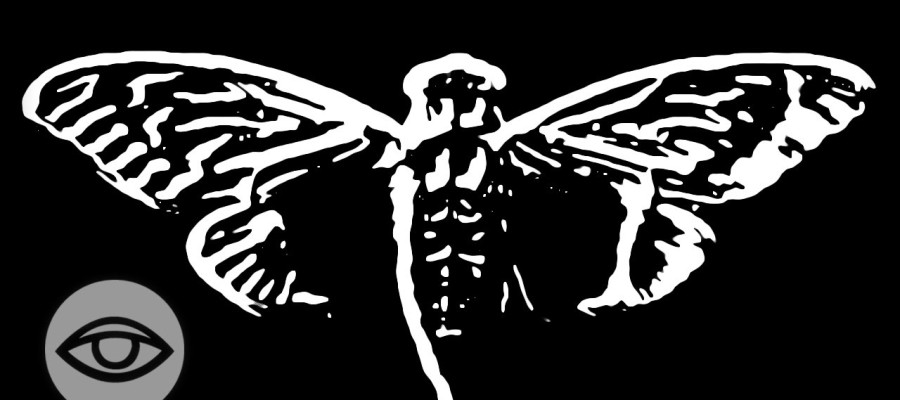 Cicada 3301: The Internet's Most Secret Organization?