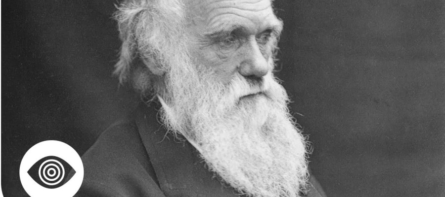 The Darwin Conspiracy: Is Evolution A Myth?