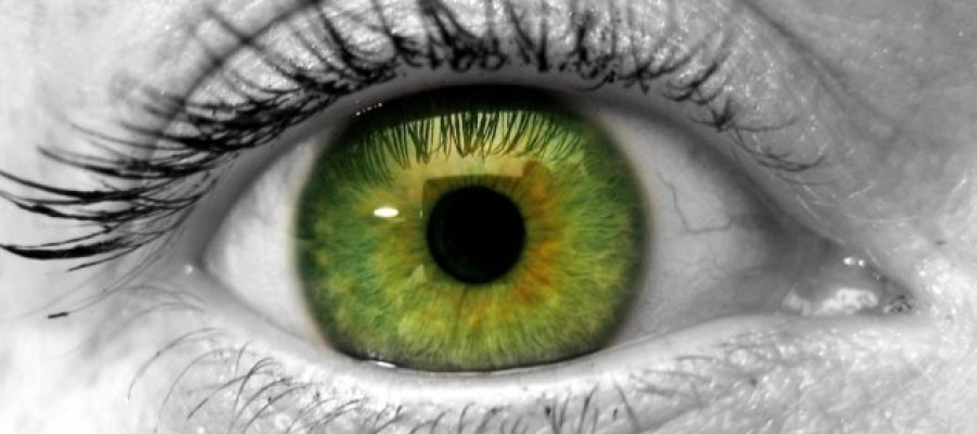 Bionic eyes could eventually 'cure' blindness