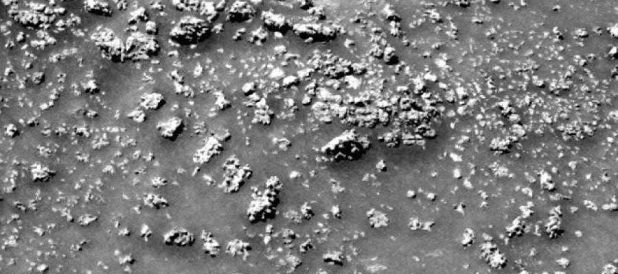 Mars 'cauliflower' may hint at microbial life