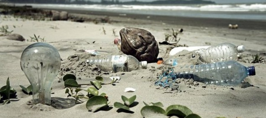 Scientists discover plastic-eating bacteria