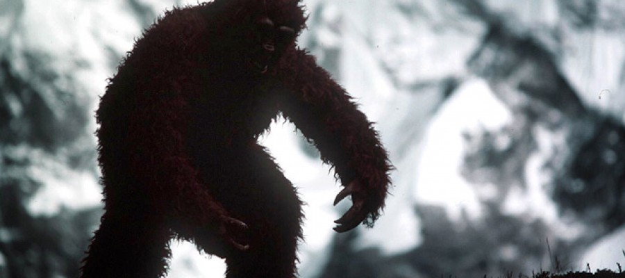 10 strange Bigfoot facts that are weird!