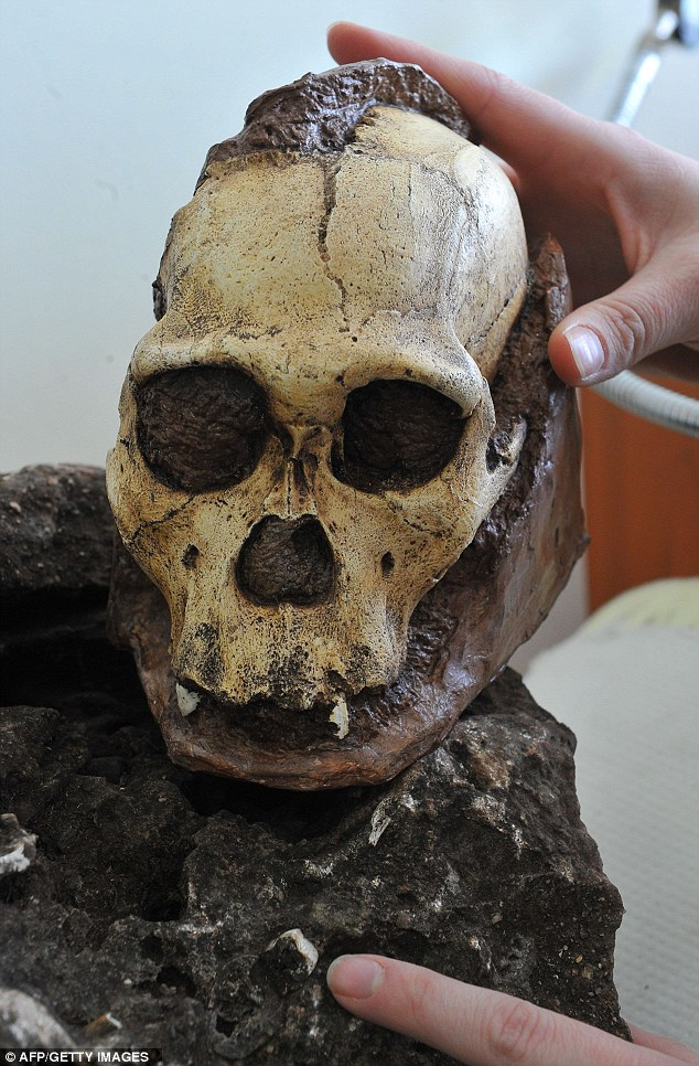 Rock containing 'most complete early human skull ever' discovered