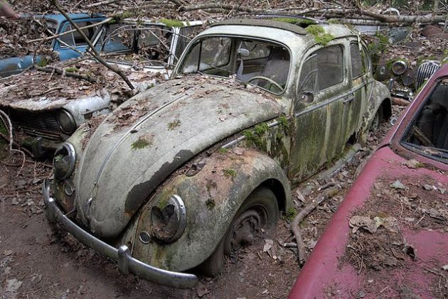 kaufdorf-car-graveyard-switzerland-2