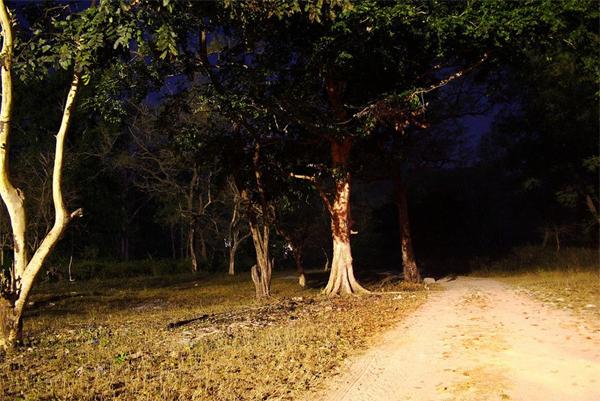 Delhi Cantonment haunted place