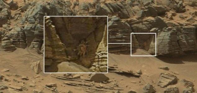 Animal on Mars