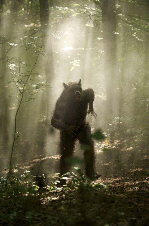 real-werewolf-3